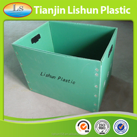 Low Price Free Sample Hard Polypropylene Corrugated Tool Box