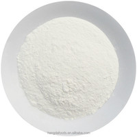 Chinese Wholesale Suppliers Food Spices Garlic Powder