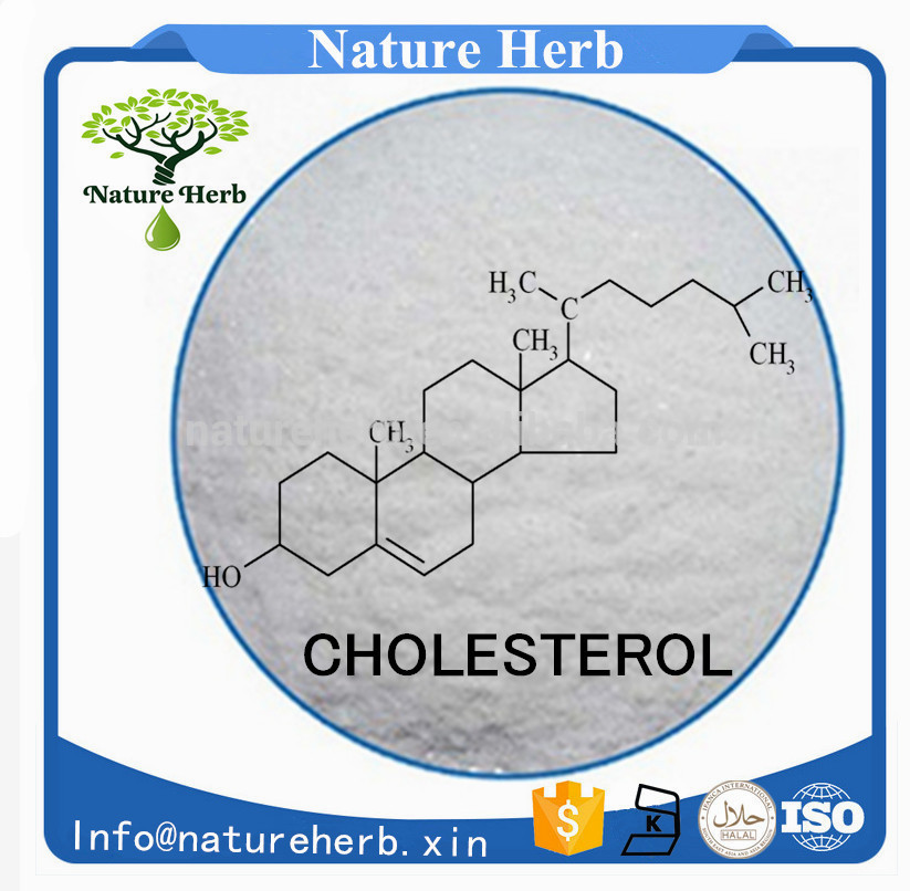 Factory Directly cholesterol uric acid glucose meter