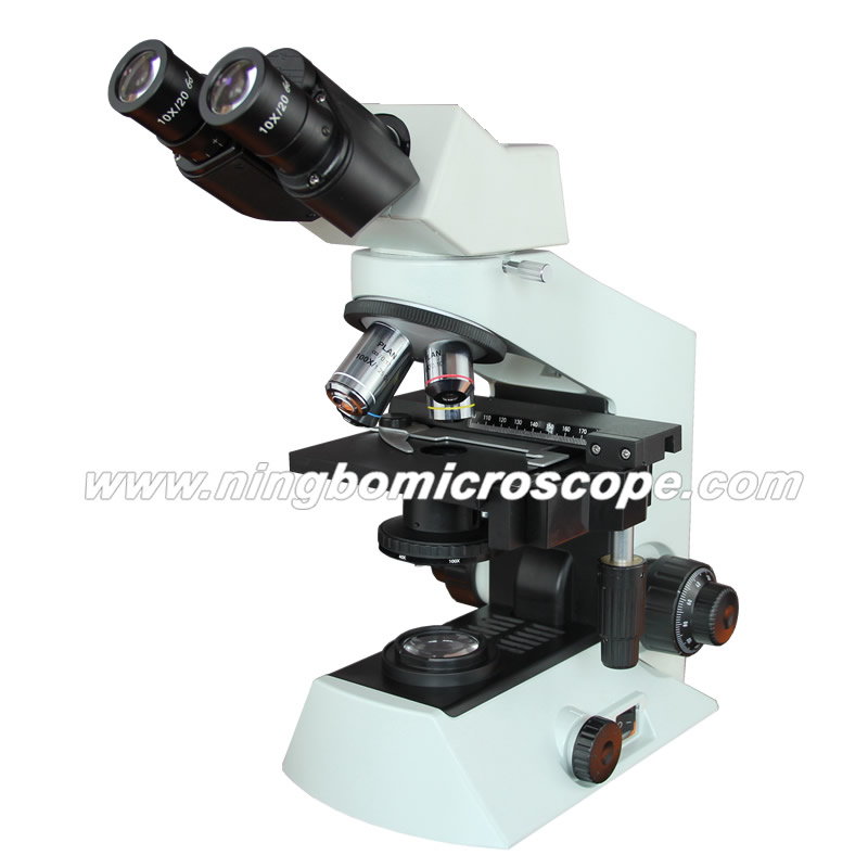 Infinity System Equivalent to Olympus Microscope CX21