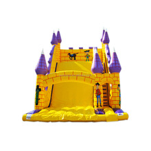 Giant Toy Story Inflatable Castle Slide Bouncer Water Walking Ball Slide