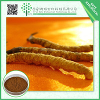 Cordyceps Mycelium Extract caterpillar fungus powder mesona chinensis extract powder and ayurvedic punarnava extract powder