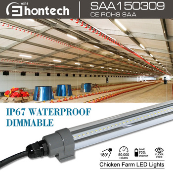 chicken shed led lighting for chicken grow healthily waterproof led