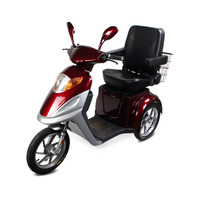 Top Quality 500W Passenger Three Wheel Bicycle