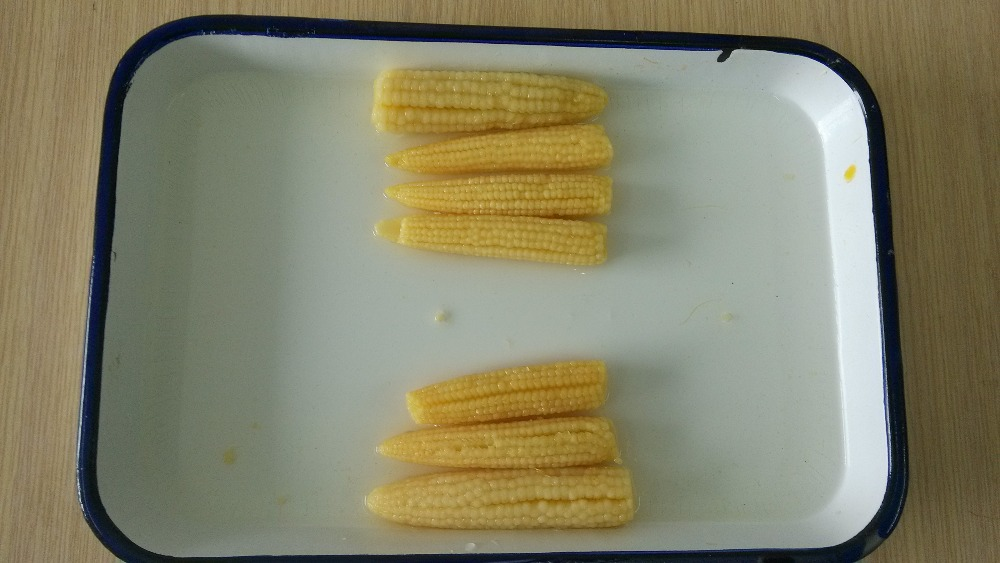 hot sale Chinese canned baby corn in brine