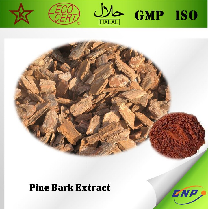 GMP ISO 100% Natural High Quality Pine Bark Extract Proantocyanidins(OPC) /