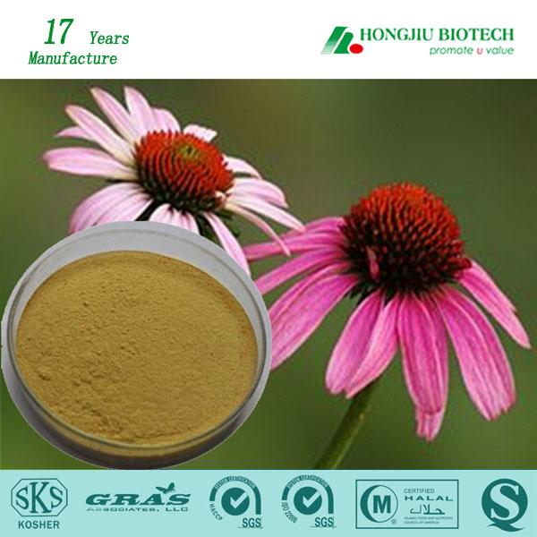 Pharmaceutical Nature Astragalus Extract Powder 40%UV Polysaccharides peptide