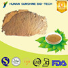High Quality Lotus Leaf Botanical Extract, Natural Lotus Leaf Flavones