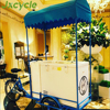 high quality ice cream trike with battery freezer