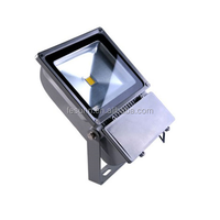 Factory direct sell IP65 high power outdoor 70W led floodlights