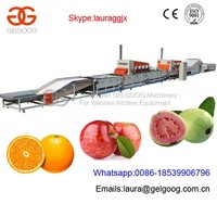 CE Approved Fruit Cleaning Waxing Drying Grading Machine for Citrus/Lemon/Tomato