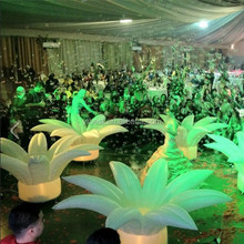 High Quality Popular Wedding Inflatable Flower with LED