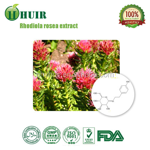 High Quality 100% Natural Organaic Water Soluble Rhodiola Rosea Extract