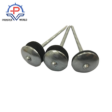 CHINA SPCC Umbrella Head Rubber Washer Roofing Nails