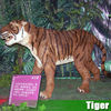 /product-detail/real-life-amusement-event-simulation-animatronic-animal-king-tiger-60169376801.html