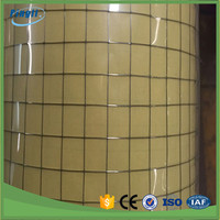 High quality 3/8 inch galvanized welded wire mesh cheap