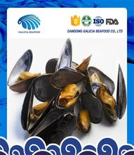 frozen good quality mussels with faster delivery for reasonable price