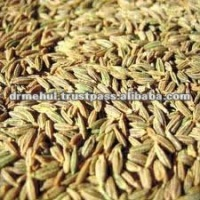 cumin seeds in syria
