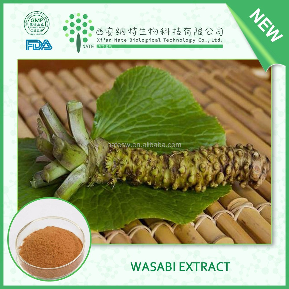 Hot selling health care product Wasabi powder extract 100% powder 4:1