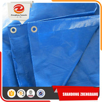 Factory price China PE tarpaulin For camping tent cover