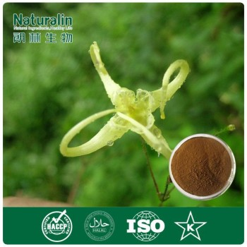 Epimedium extract powder 5% Icariin HPLC, factory supplys