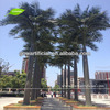 APM020-1 GNW 17ft Artificial fake palm tree Washington palm plants for supermarket Landscaping Decoration Outdoor use