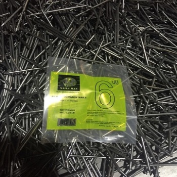 6'' Hot Galvanized common nails