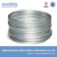 Hot Dipped Galvanized Single Strand Wire (10 Gauge )