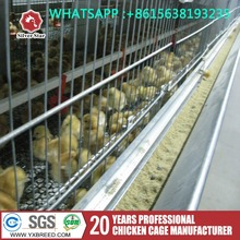Commercial cheap automatic poultry farm equipment for broilers