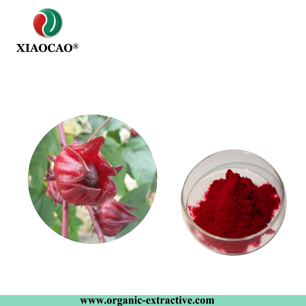 China You Roselle China You Roselle Manufacturers And Suppliers On