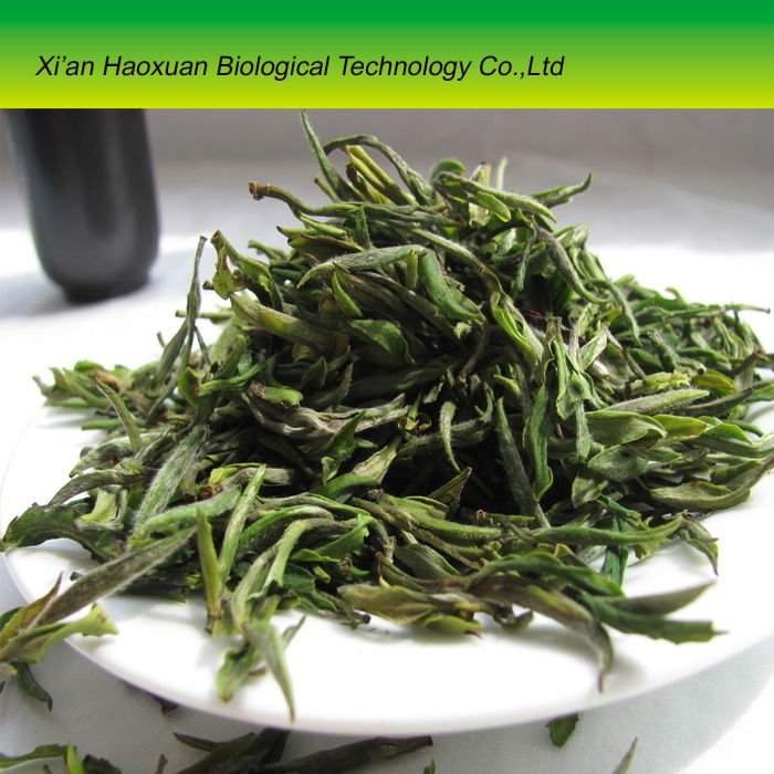 Factory supply organic black tea leaf powder extract