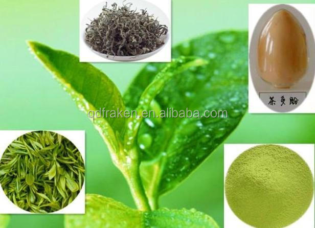 100% Natural Polyphenol 7%-98% Organic Green Tea Extract