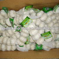 Professional factory produce china red garlic wholesales