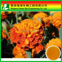 Marigold extract/Lutein/xanthin/ phytoxanthin/xanthophyll for usa