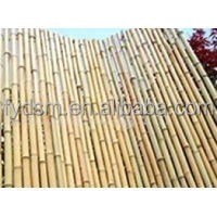 High Quality natural bamboo poles for scaffolding material With Compete Price