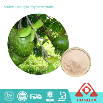 Fruit Part extract Graviola extract herb medicine solvent extraction