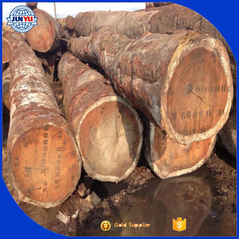 Africa Angola rosewood Tali logs Kosso logs for sale
