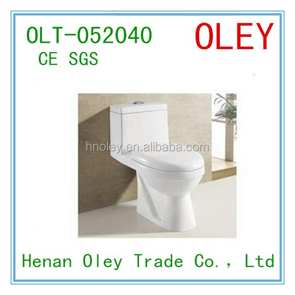 washdown bathroom bowl Dual-flush floor mounted wc one piece toilet