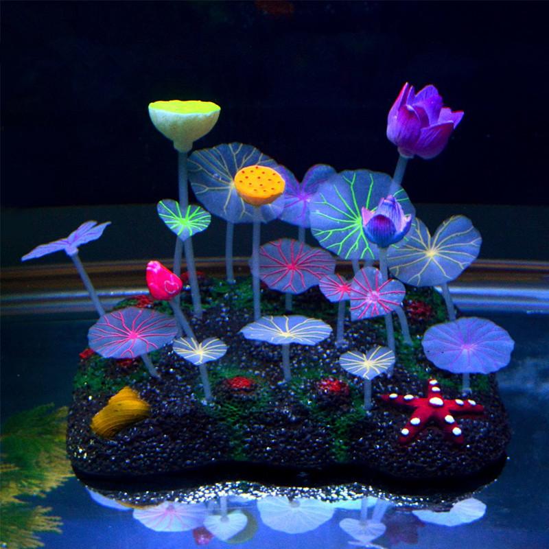 gro handel aquarien wurzeln kaufen sie die besten aquarien. Black Bedroom Furniture Sets. Home Design Ideas