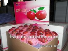 apple exporters red apple fruit price