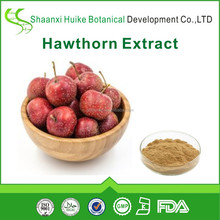 100% Natural Anti-HIV Natural Hawthorn Berry Fruit Leaf Extract with Total Flavones