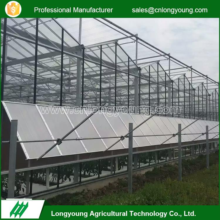 Hot sale climate control systems agriculture glass venlo greenhouse