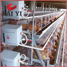 Hot Galvanized Automatic Egg Poultry Farm/Guangzhou Chicken Cage
