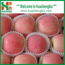 China Good Quality Delicious Fresh Apple with Low Prices for exporting to India/Middle East/Europe