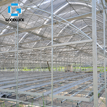 Single Span Agricultural Greenhouse with Film Cover