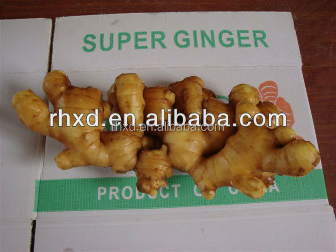 different size and packing fresh ginger on sale in the coming new year with best quality and reasonable price