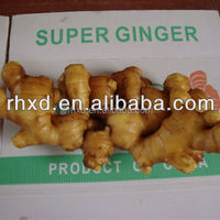 Different Size And Packing Fresh Ginger