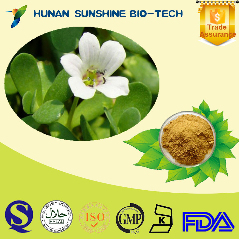 Wholesale Natural Bacopa Monnieri Extract, Bacopasides 20% With High Quality