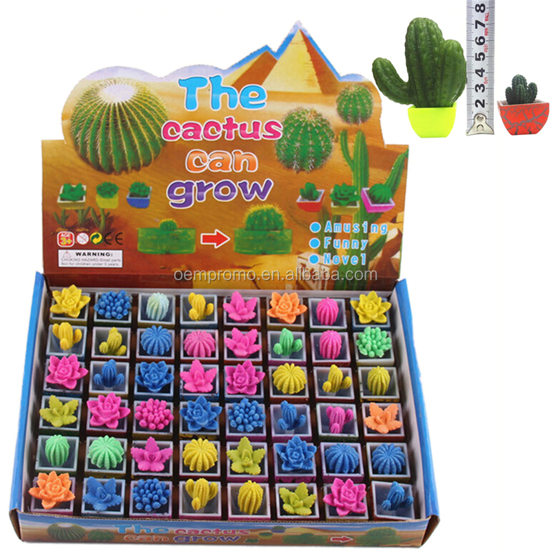 Office Decoration Water Growing Cactus Magic Expansion Plant Toys