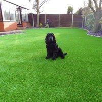Synthetic Artificial Grass With Real Looking